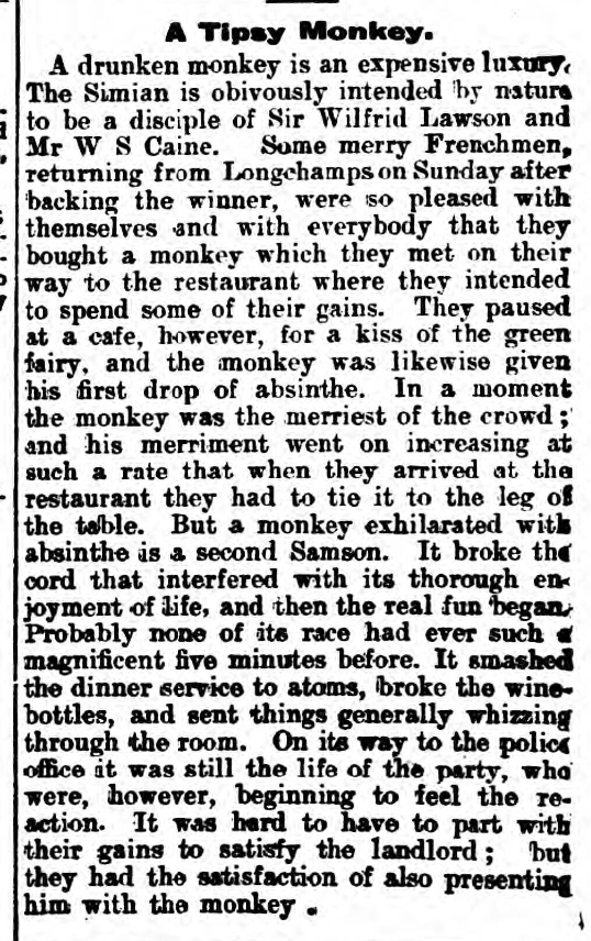 historical newspaper report about a drunk monkey
