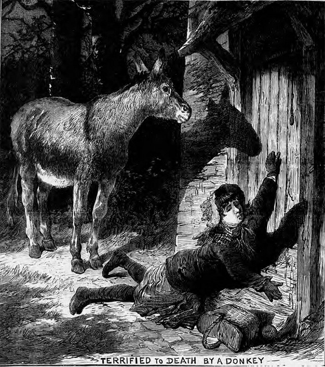 The Illustrated Police News reported that a child had been terrified to death by a donkey