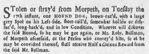 Lost Dog Newcastle Courant June 1740