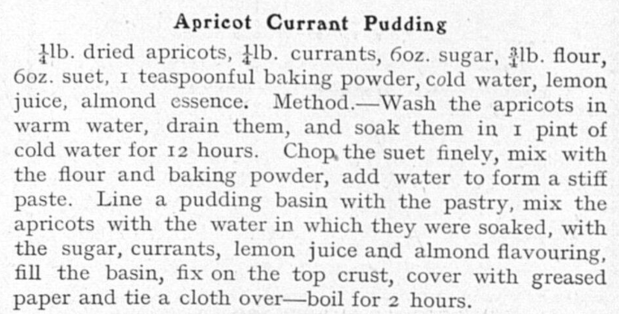Apricot currant pudding