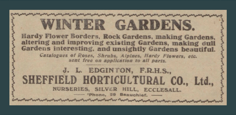 winter garden advert
